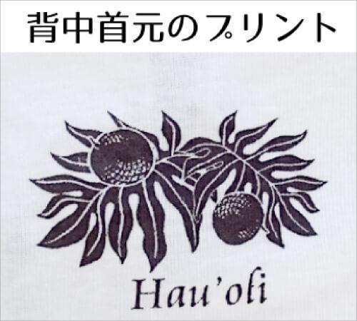 ha01006w010m1